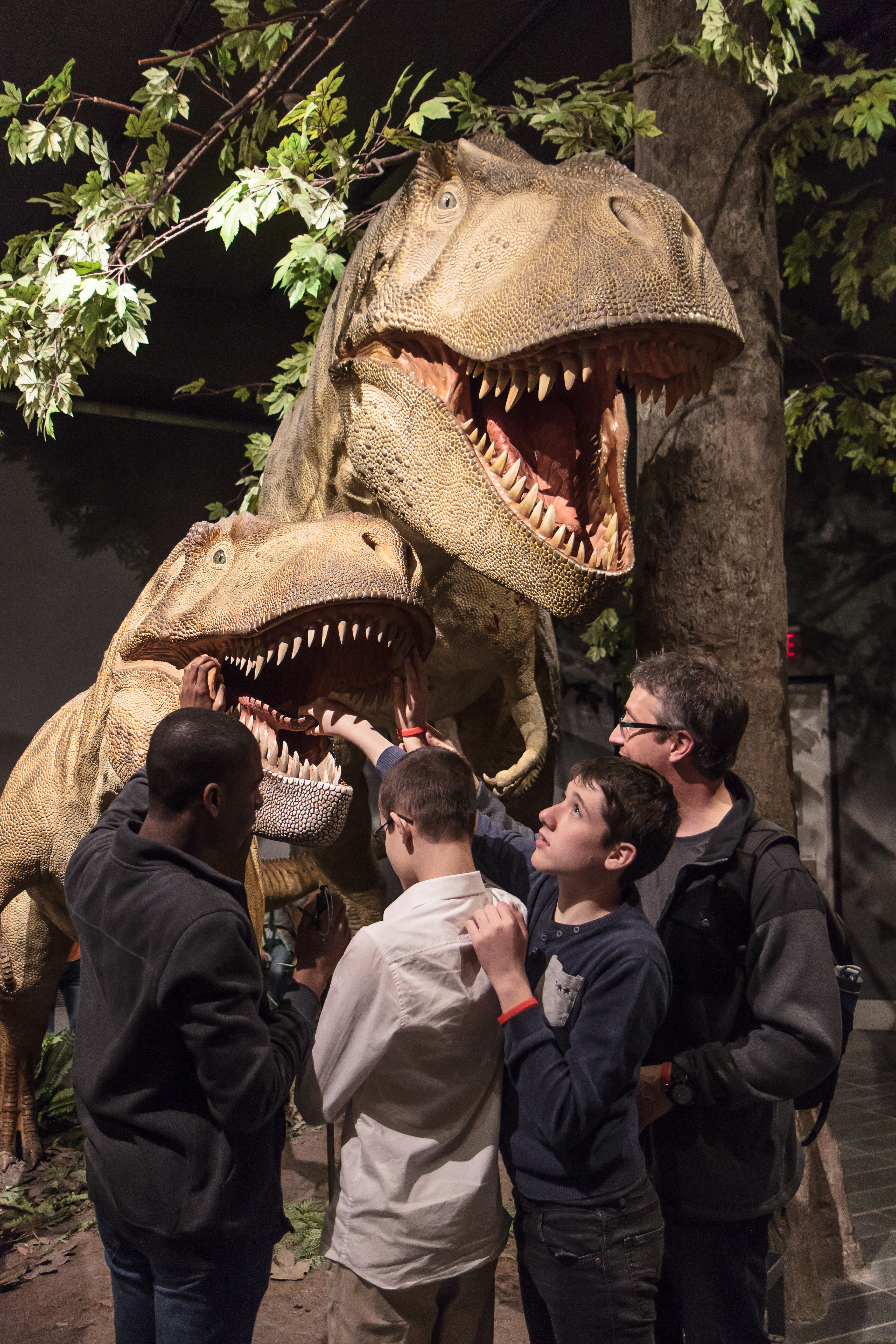 dynosores au Musée de la nature